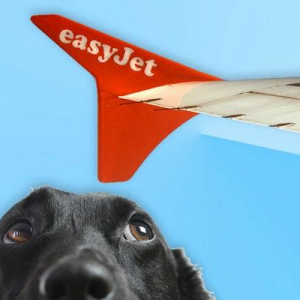 Easyjet – Pet Policy & tie up