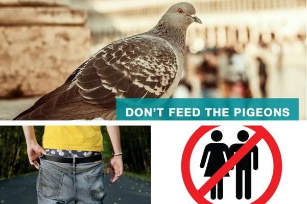 VENICE – Don't feed the pigeons