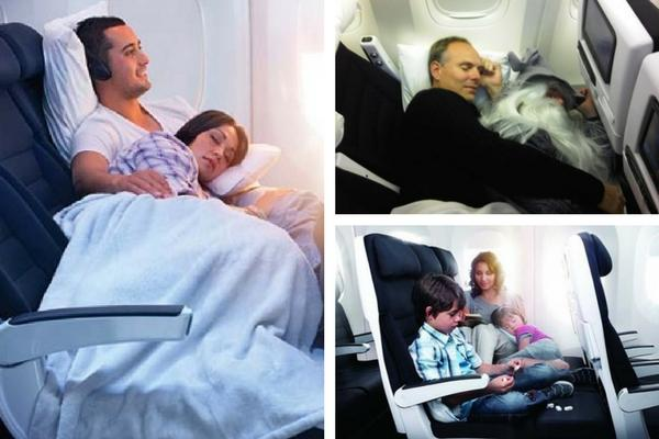 Unusual & Weirdest Airlines Air New Zealand – Cuddle Class