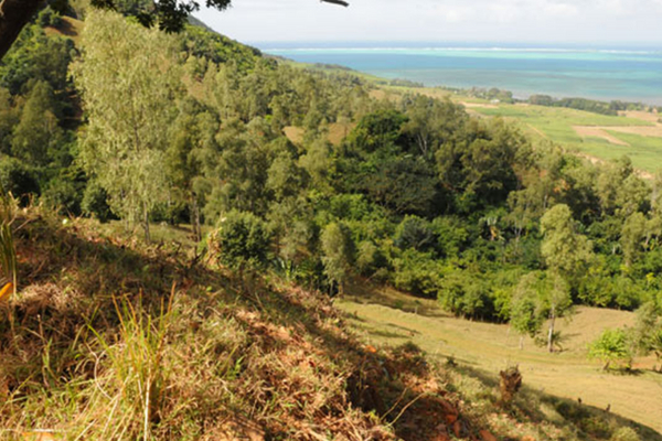 Top Hikes in Mauritius