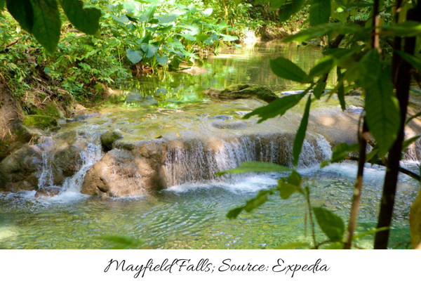 Best Hiking Trails in Jamaica